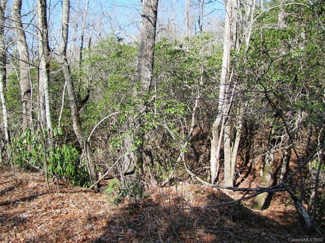 00 Dogwood Lane E-2, Penrose, NC 28766 (#3370260) :: Puffer Properties