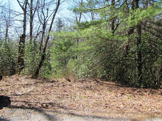 00 Dogwood Drive E-6, Penrose, NC 28766 (#3370265) :: Puffer Properties