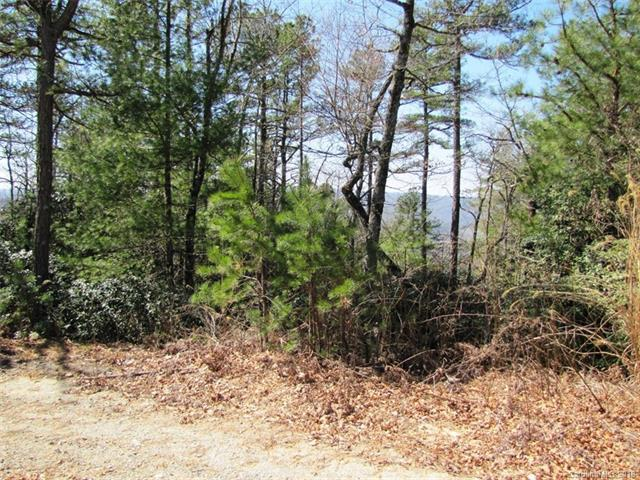 00 Emma Bri Lane F-5, Hendersonville, NC 28739 (#3370290) :: Cloninger Properties