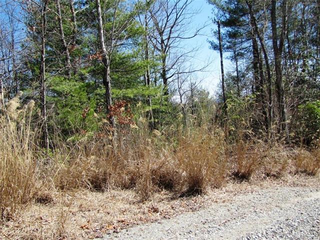 00 Emma Bri Lane F-10, Hendersonville, NC 28739 (#3370330) :: Cloninger Properties