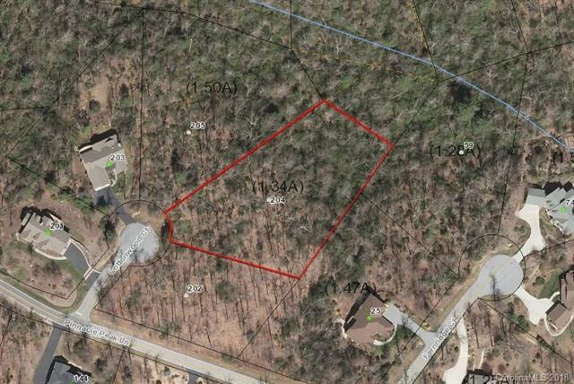 204 Cottonwood Court, Flat Rock, NC 28731 (#3370553) :: Stephen Cooley Real Estate Group