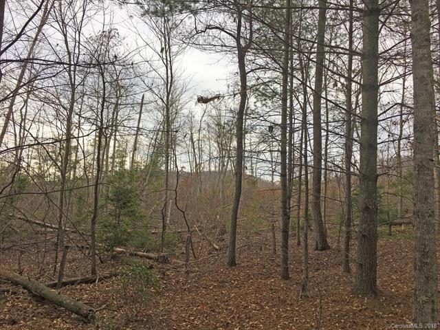 LOT 284 Trillium Trail, Nebo, NC 28761 (#3371273) :: Puffer Properties