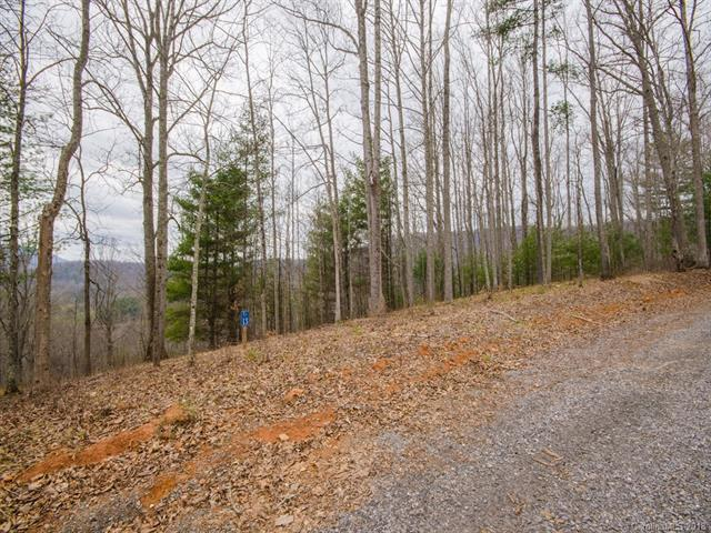 Lot 13 Rivercrest Road, Green Mountain, NC 28740 (#3371352) :: The Andy Bovender Team