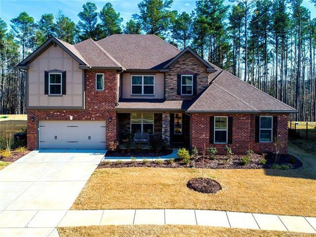 1219 Arges River Drive, Fort Mill, SC 29715 (#3371546) :: LePage Johnson Realty Group, LLC