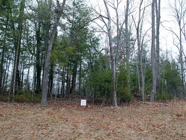 32 Jackson Meadow Road #23, Fletcher, NC 28732 (#3371873) :: Rinehart Realty