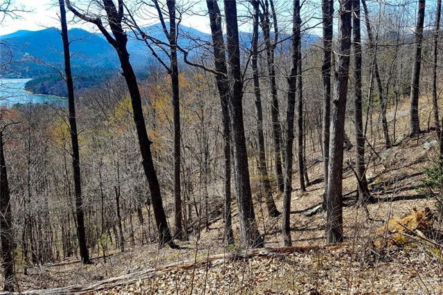 0 Hawks Nest Trail #21, Lake Lure, NC 28746 (#3371876) :: Puffer Properties