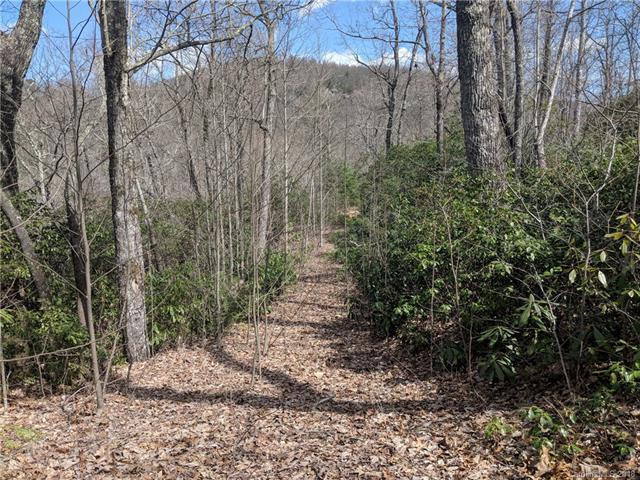 16 Mount Amy Road #16, Black Mountain, NC 28711 (#3372546) :: Rinehart Realty