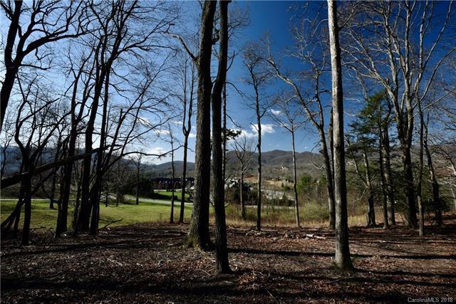 1004 Grey Bark Way Lot 40, Arden, NC 28704 (#3372555) :: LePage Johnson Realty Group, LLC
