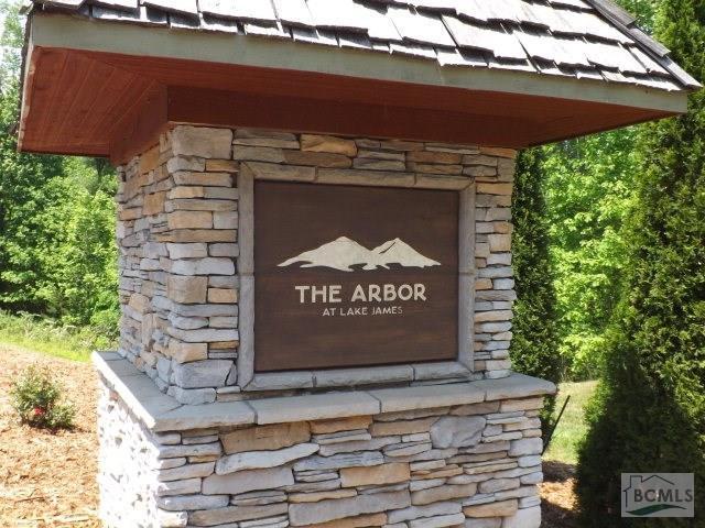 680 Harborside Drive, Nebo, NC 28761 (#3372845) :: The Kessinger Group