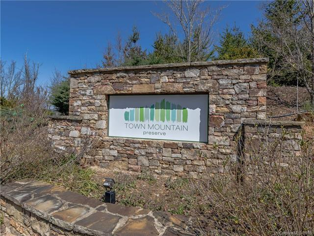 45 Bartrams Walk Drive #6, Asheville, NC 28804 (#3372913) :: RE/MAX Four Seasons Realty