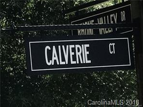 16141 Calverie Court #63, Charlotte, NC 28278 (#3373921) :: The Sarver Group