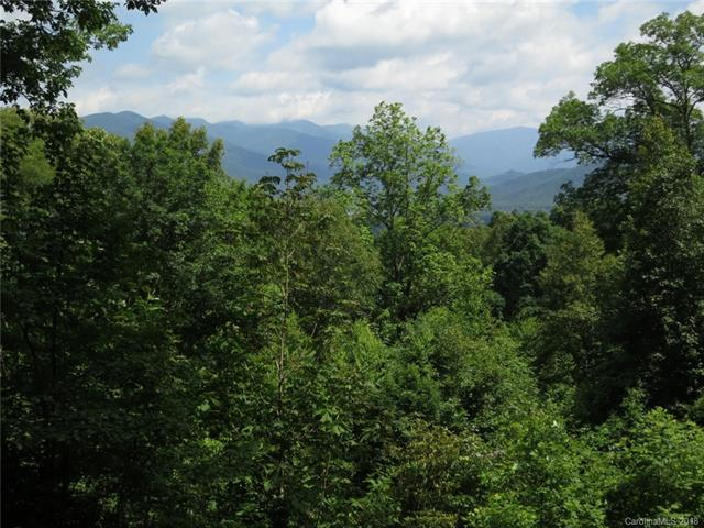 000 Wildflower Cove Road 20, 21, Swannanoa, NC 28778 (#3374071) :: Exit Realty Vistas