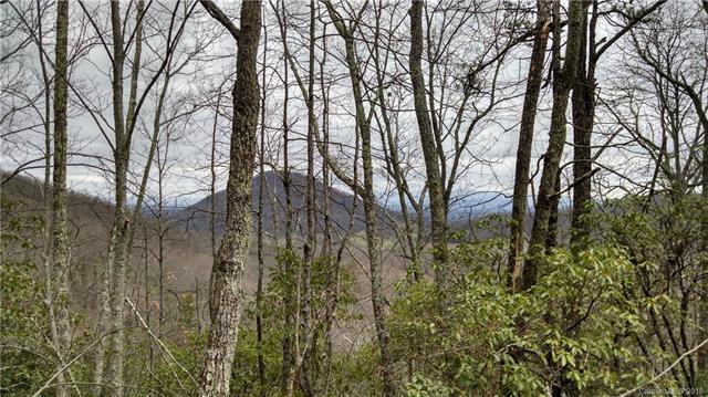 0 South Turkey Creek Road - Photo 1