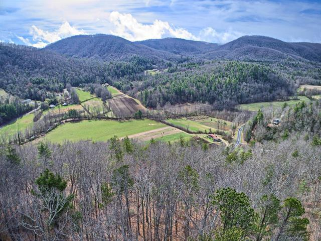 130 Brown Bear Ridge Trail #17, Zirconia, NC 28790 (#3374715) :: Zanthia Hastings Team
