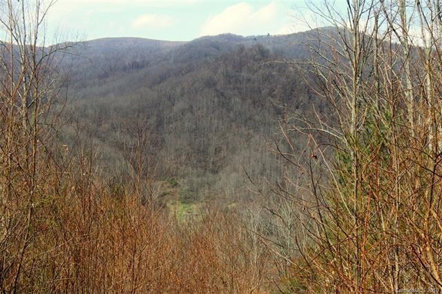 TBD Meadow Fork School Road #5, Hot Springs, NC 28743 (#3375160) :: Rinehart Realty