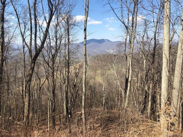 Lot 36 Cattail Lane, Waynesville, NC 28786 (#3375404) :: Exit Mountain Realty