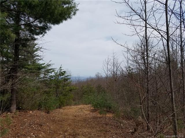 lot 37 Rose Briar Road, Boomer, NC 28606 (#3375532) :: Cloninger Properties