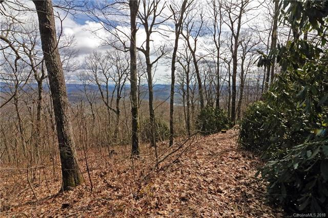 Lot 11 Summit Ridge Road, Lake Toxaway, NC 28747 (#3375821) :: The Andy Bovender Team