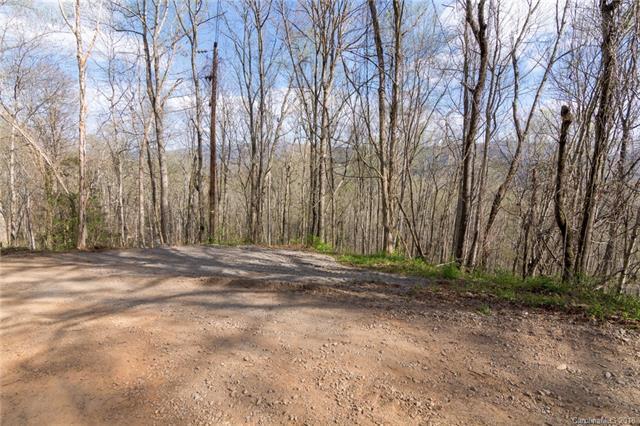 32 Annie Lane, Asheville, NC 28805 (#3376327) :: Exit Mountain Realty
