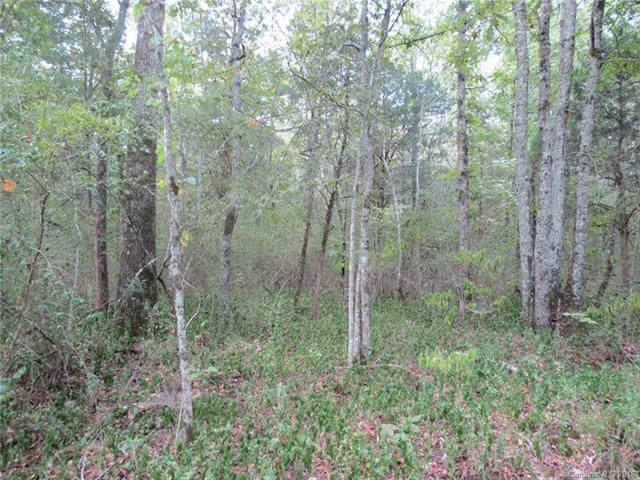 6 AC Wooten Road, Chester, SC 29706 (#3376929) :: Mossy Oak Properties Land and Luxury
