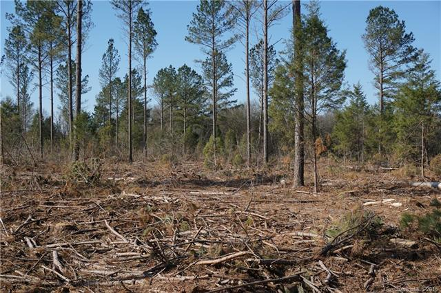 4 AC Wooten Road, Chester, SC 29706 (#3376943) :: Mossy Oak Properties Land and Luxury