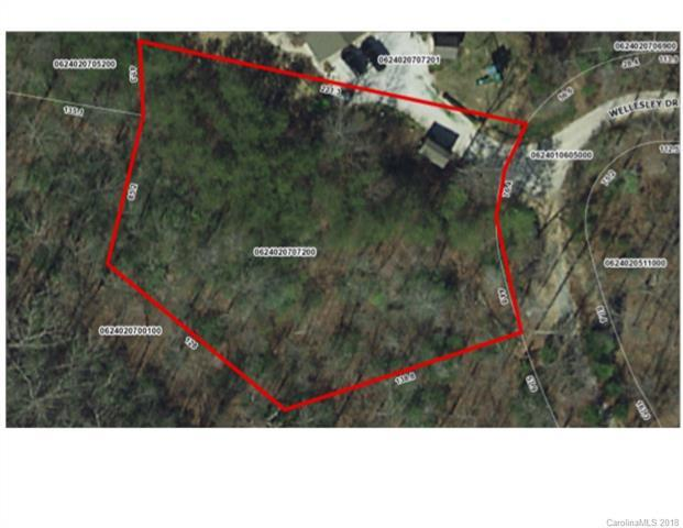 0 Wellesley Drive, Landrum, SC 29356 (#3377138) :: Stephen Cooley Real Estate Group