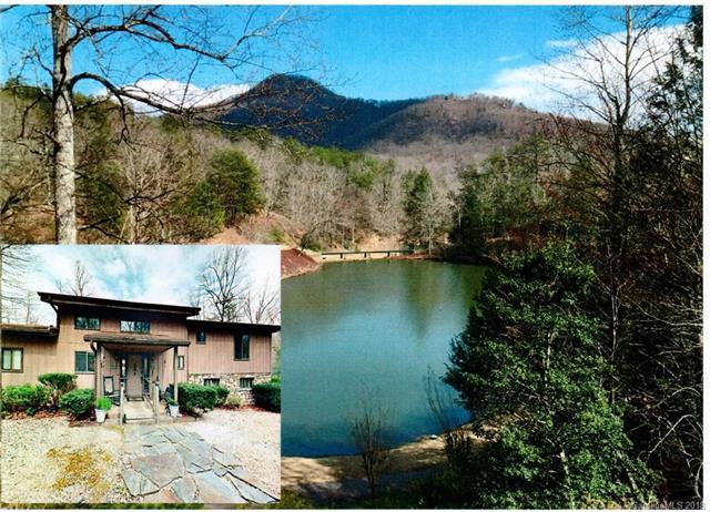320 Bee Tree Point, Lake Lure, NC 28746 (#3377328) :: Phoenix Realty of the Carolinas, LLC