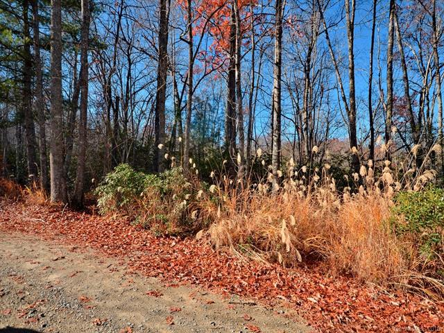 lot 19-21 Laurel Cove Retreat, Etowah, NC 28729 (#3377853) :: Exit Realty Vistas