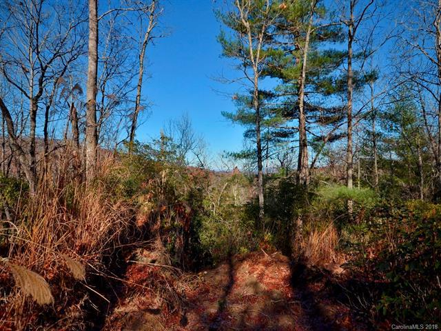 lot 13-15 & 30-31 Laurel Cove Retreat, Etowah, NC 28729 (#3377876) :: Exit Realty Vistas