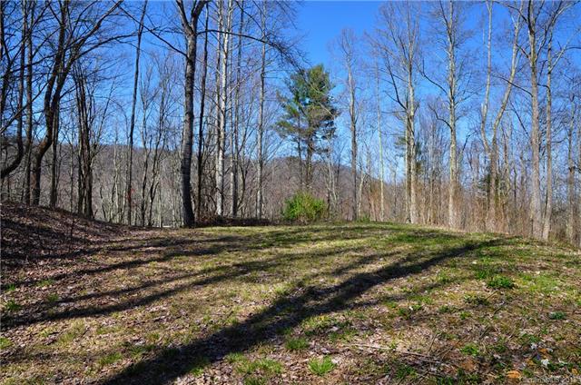 717 Deerfield Drive, Hot Springs, NC 28743 (#3378159) :: Rinehart Realty