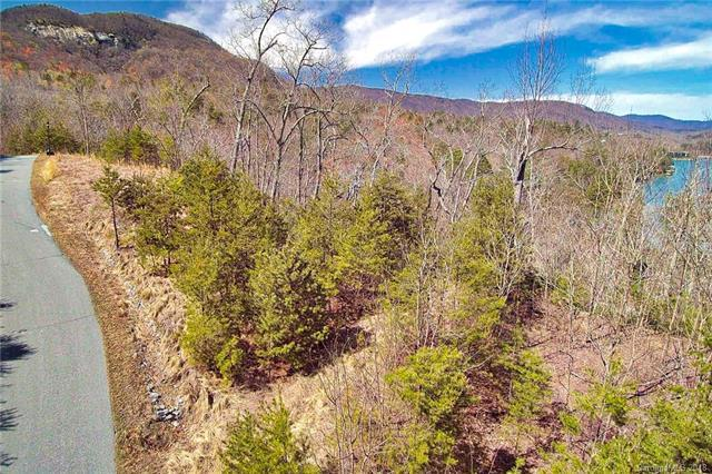 000 Holmstead Drive #09, Lake Lure, NC 28746 (MLS #3378344) :: RE/MAX Journey