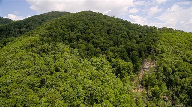 000 Haney Creek - Photo 1
