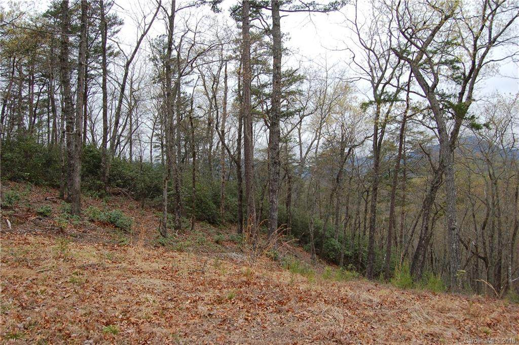0 Amys Ridge Road #232, Lake Lure, NC 28746 (#3378679) :: Phoenix Realty of the Carolinas, LLC