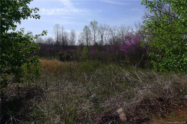 101 Polaris Drive, Mocksville, NC 27028 (#3378694) :: Miller Realty Group