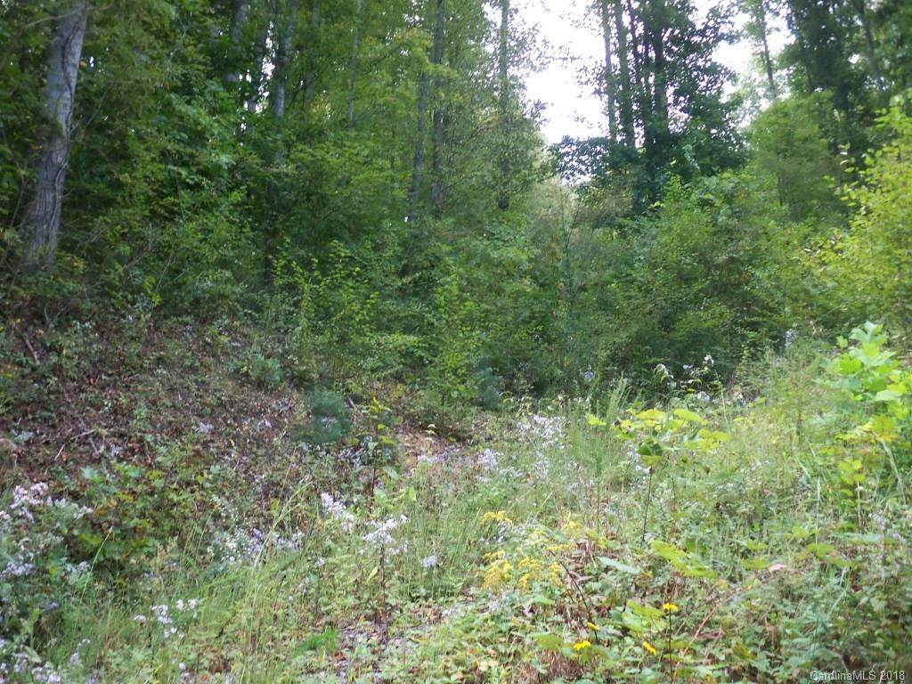 Lots 1 & 2 Justice Trail - Photo 1