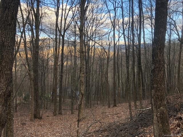 Lot 3 Libbies Lane #3, Waynesville, NC 28786 (#3378818) :: Team Southline