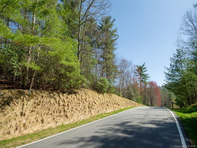144 Chattooga Run #408, Hendersonville, NC 28739 (#3378948) :: Caulder Realty and Land Co.