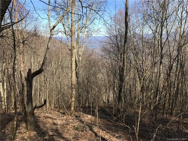 Lot #17 Quail Ridge Drive #17, Maggie Valley, NC 28751 (#3379086) :: Puffer Properties