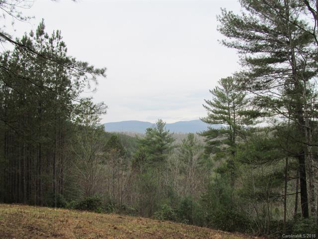 9 Destiny Drive, Mill Spring, NC 28756 (#3379298) :: Robert Greene Real Estate, Inc.