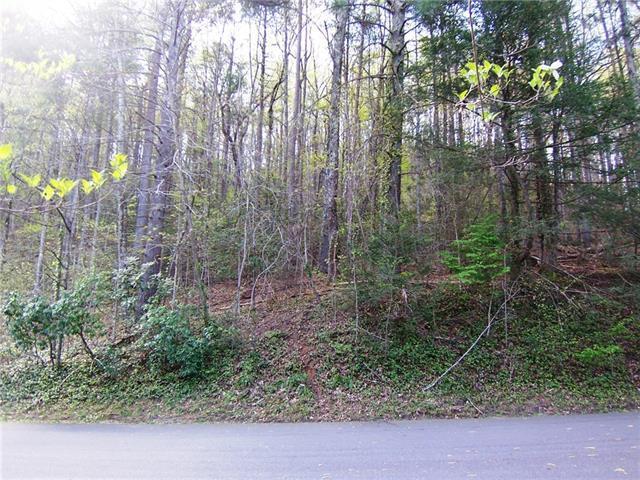 00 Rockwood Drive #, Lenoir, NC 28645 (#3379897) :: LePage Johnson Realty Group, LLC
