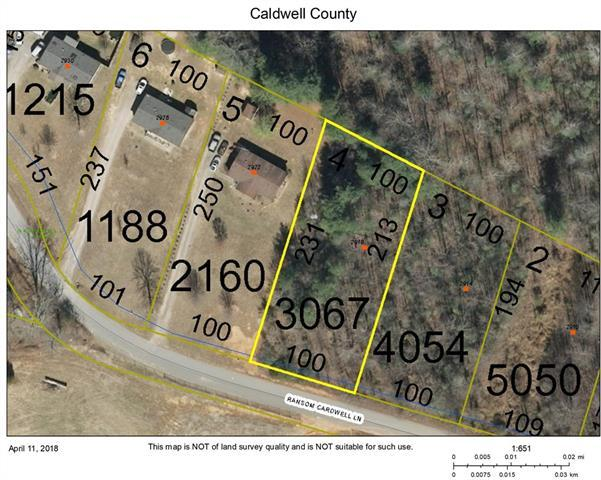2918 Ransom Cardwell Lane, Lenoir, NC 28645 (#3380046) :: High Performance Real Estate Advisors