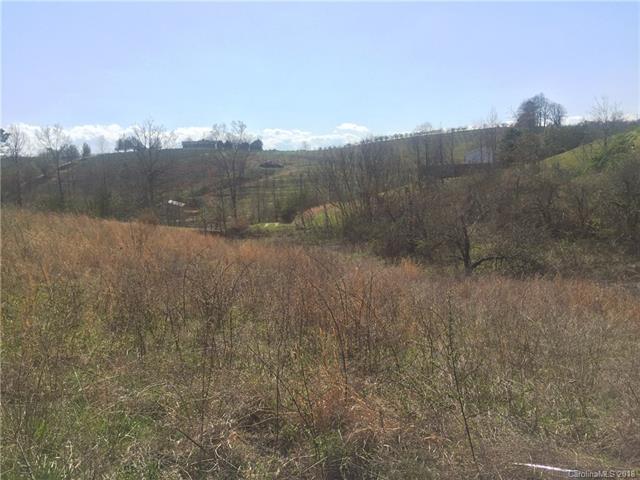 67 Daniel Ridge Drive #3, Hendersonville, NC 28792 (#3380459) :: LePage Johnson Realty Group, LLC