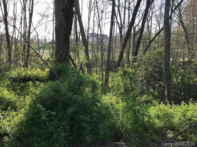- Fox Ridge Drive 103 And 104, Hendersonville, NC 28792 (#3380481) :: Puffer Properties