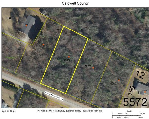 2962 Ransom Cardwell Lane, Lenoir, NC 28645 (#3380503) :: High Performance Real Estate Advisors