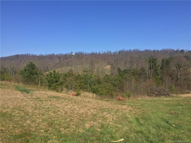 0000 Amber Ridge Lane, Hendersonville, NC 28792 (#3380520) :: LePage Johnson Realty Group, LLC