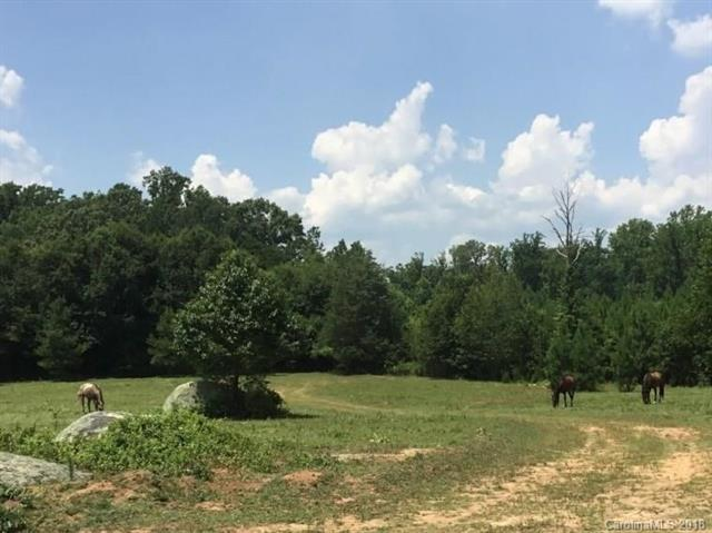 4080 Hwy 324 Highway, Rock Hill, SC 29732 (#3380562) :: Miller Realty Group