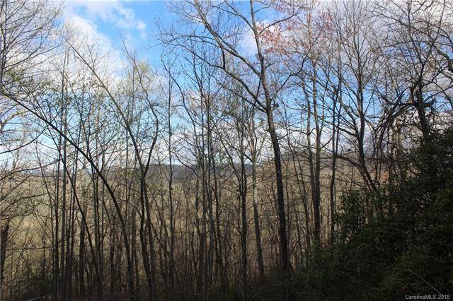 0000 Firefly Lane #64 & 65, Etowah, NC 28729 (#3380615) :: RE/MAX Four Seasons Realty