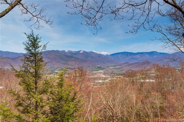 115 Mountain Creek Drive, Swannanoa, NC 28778 (#3380667) :: Exit Mountain Realty