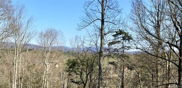 30 Timber Moss Drive #49, Asheville, NC 28804 (#3380731) :: Stephen Cooley Real Estate Group