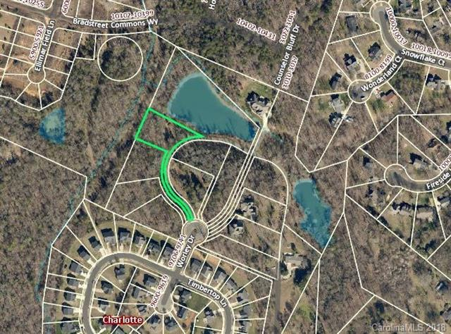 9733 Worley Drive, Charlotte, NC 28215 (#3380870) :: Exit Mountain Realty